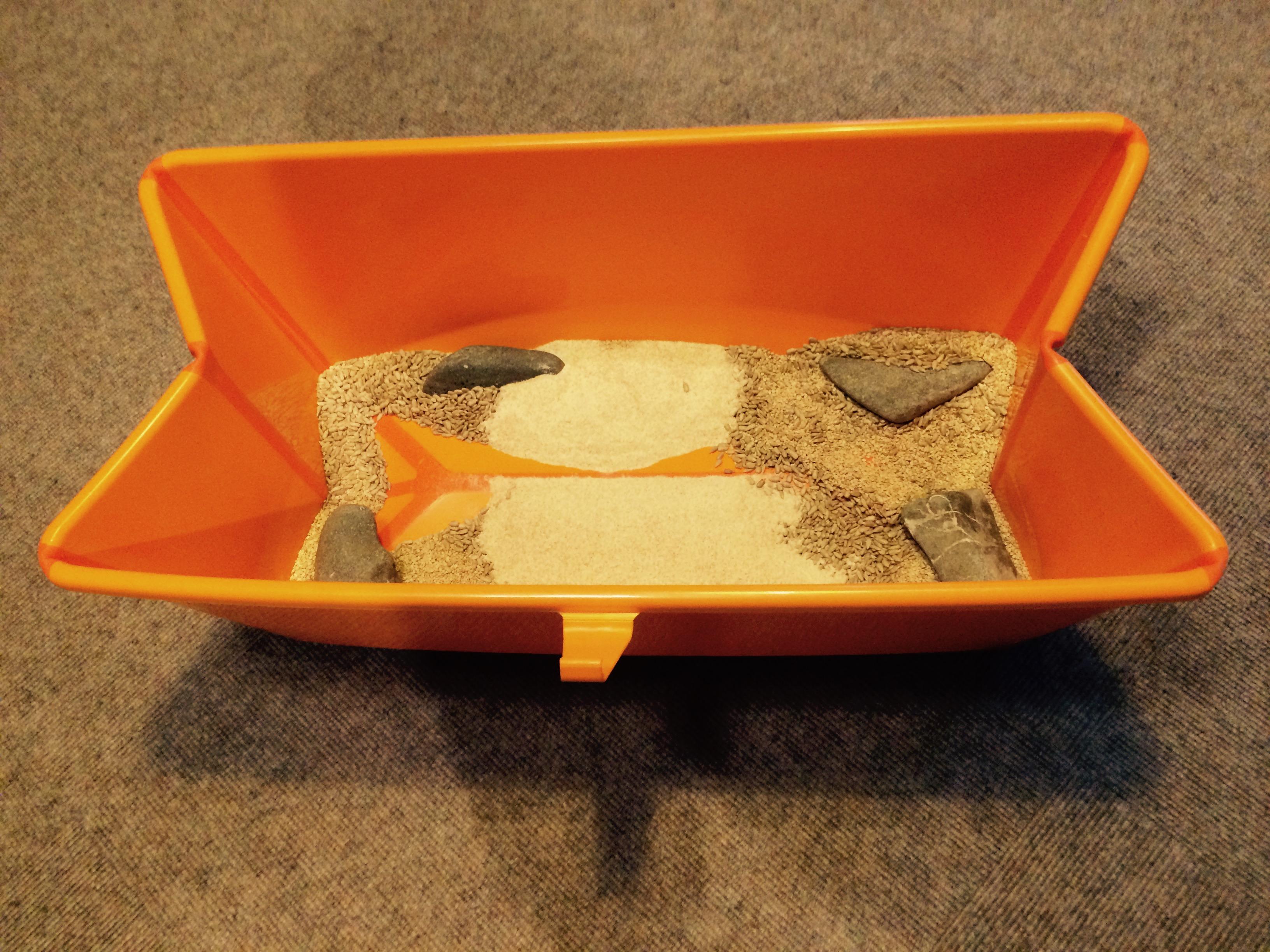 Die Krabbelzwerge 6-12 Monate (Malibu Eltern-Baby-Kurs)
